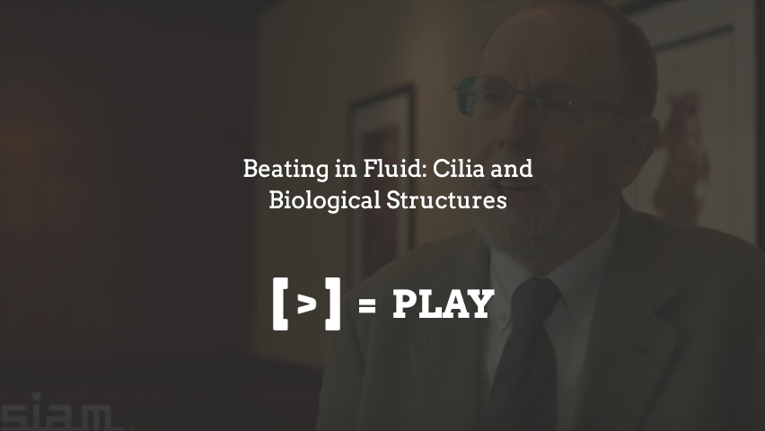 SIAM Annual Meeting: Beating in Fluid: Cilia and Biological Structures