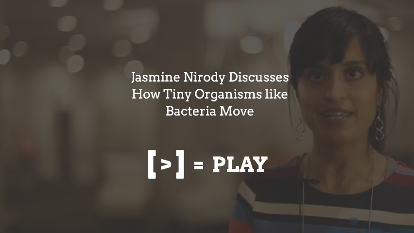 2014 SIAM Conference on the Life Sciences: How Tiny Organisms like Bacteria Move